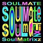 SoulMatrixz - SoulMate_ color neg image